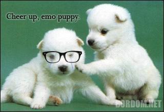 :emopuppy:
